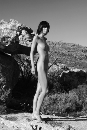 The Standing Nude
