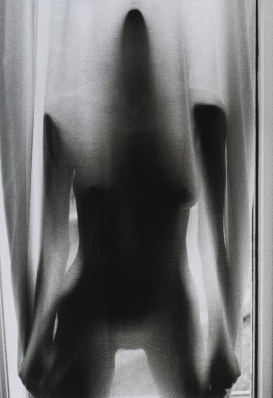 Veiled Nude 1